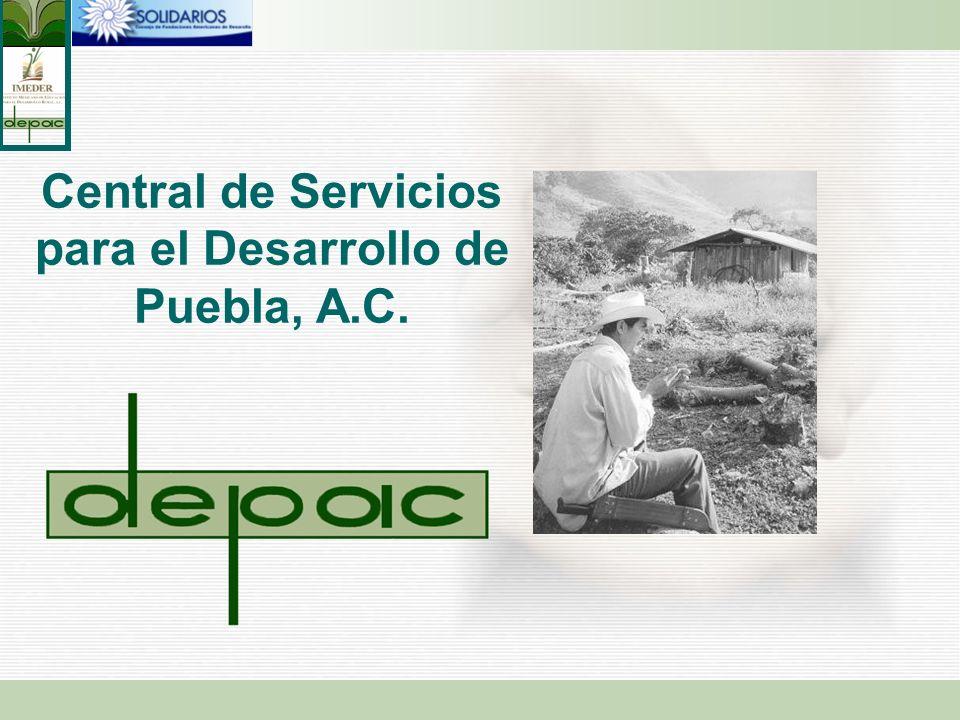 Central de Servicios para el Desarrollo de Puebla, A.C.
