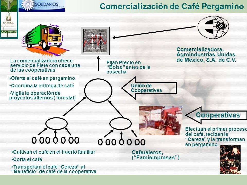 Comercialización de Café Pergamino
