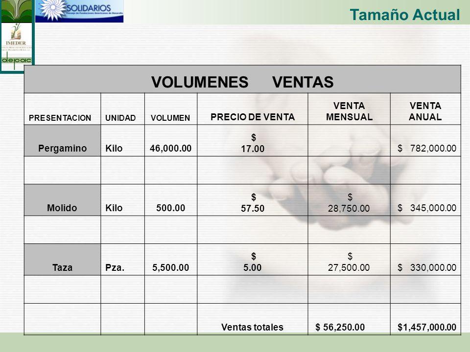 Tamaño Actual VOLUMENES VENTAS PRECIO DE VENTA VENTA MENSUAL