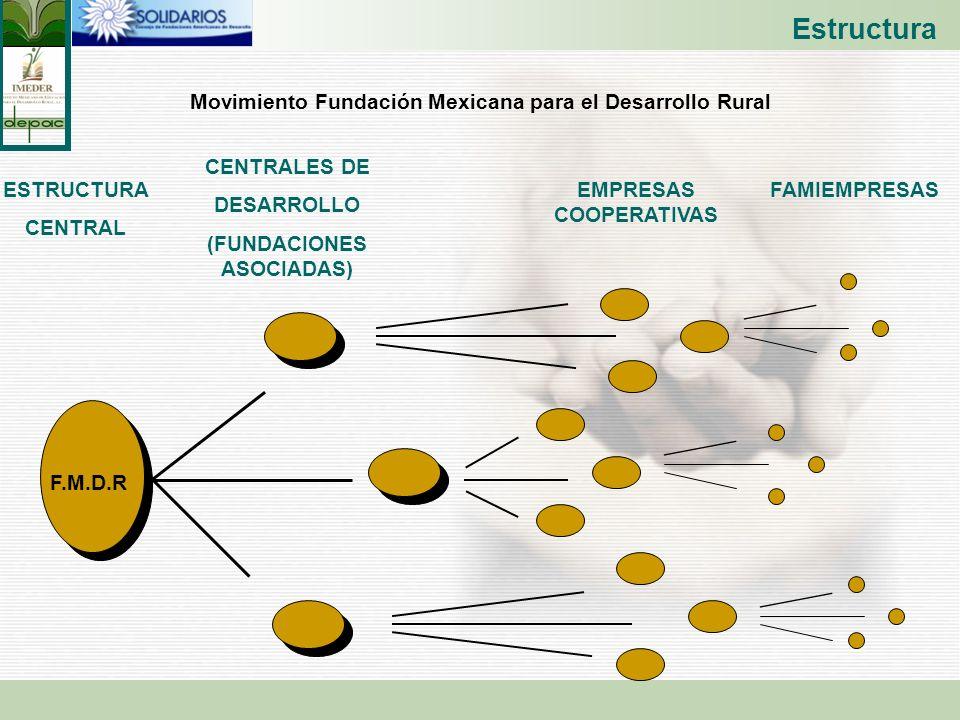 Estructura Movimiento Fundación Mexicana para el Desarrollo Rural