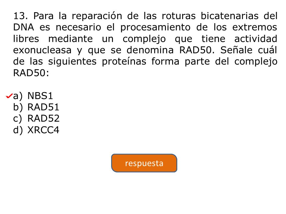 13. Para la reparación de las roturas bicatenarias del DNA es necesario el procesamiento de los extremos libres mediante un complejo que tiene actividad exonucleasa y que se denomina RAD50. Señale cuál de las siguientes proteínas forma parte del complejo RAD50: