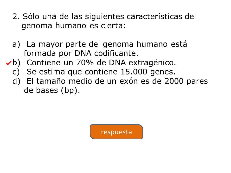 2. Sólo una de las siguientes características del genoma humano es cierta: