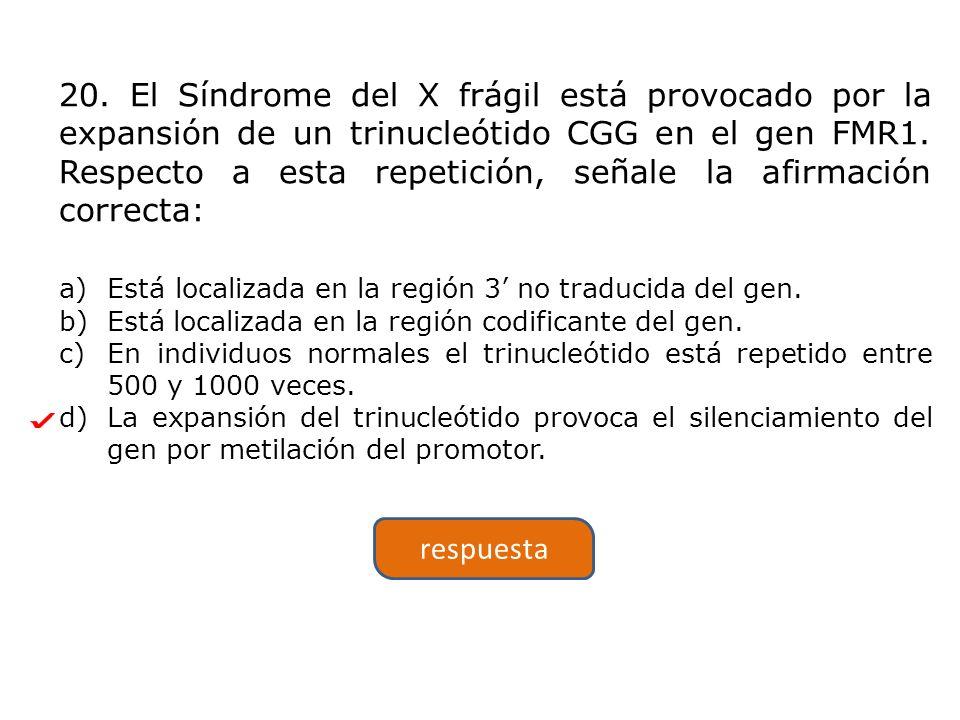 20. El Síndrome del X frágil está provocado por la expansión de un trinucleótido CGG en el gen FMR1. Respecto a esta repetición, señale la afirmación correcta: