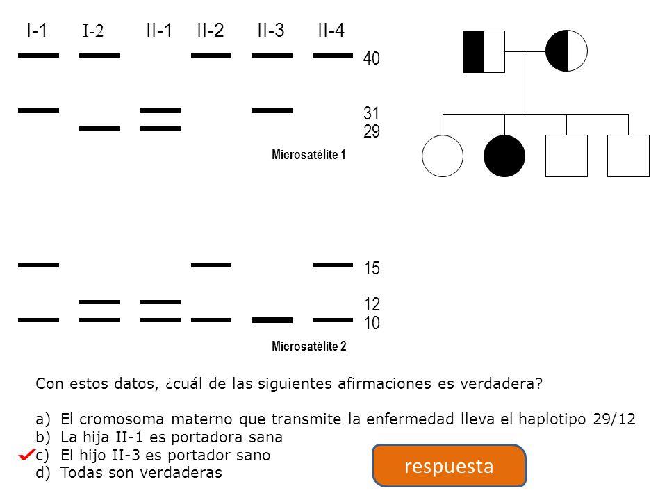 respuesta 40 31 29 15 12 10 I-1 I-2 II-1 II-2 II-3 II-4