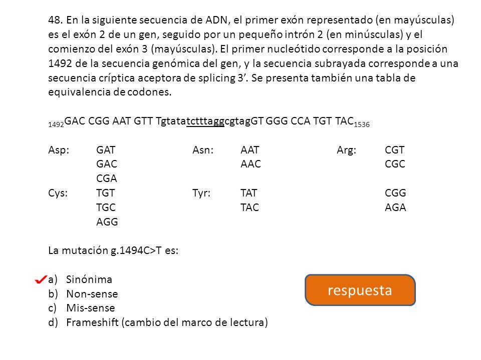 48. En la siguiente secuencia de ADN, el primer exón representado (en mayúsculas) es el exón 2 de un gen, seguido por un pequeño intrón 2 (en minúsculas) y el comienzo del exón 3 (mayúsculas). El primer nucleótido corresponde a la posición 1492 de la secuencia genómica del gen, y la secuencia subrayada corresponde a una secuencia críptica aceptora de splicing 3'. Se presenta también una tabla de equivalencia de codones.