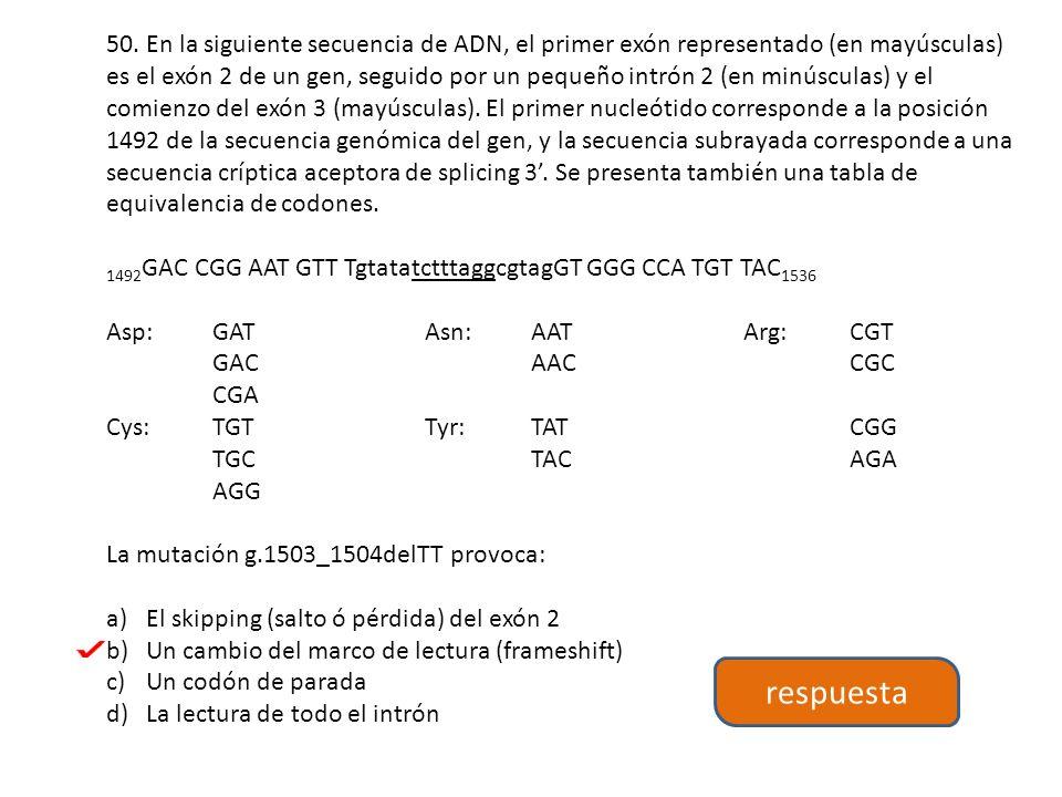 50. En la siguiente secuencia de ADN, el primer exón representado (en mayúsculas) es el exón 2 de un gen, seguido por un pequeño intrón 2 (en minúsculas) y el comienzo del exón 3 (mayúsculas). El primer nucleótido corresponde a la posición 1492 de la secuencia genómica del gen, y la secuencia subrayada corresponde a una secuencia críptica aceptora de splicing 3'. Se presenta también una tabla de equivalencia de codones.