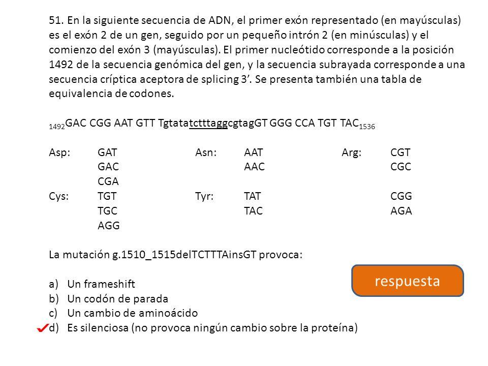 51. En la siguiente secuencia de ADN, el primer exón representado (en mayúsculas) es el exón 2 de un gen, seguido por un pequeño intrón 2 (en minúsculas) y el comienzo del exón 3 (mayúsculas). El primer nucleótido corresponde a la posición 1492 de la secuencia genómica del gen, y la secuencia subrayada corresponde a una secuencia críptica aceptora de splicing 3'. Se presenta también una tabla de equivalencia de codones.