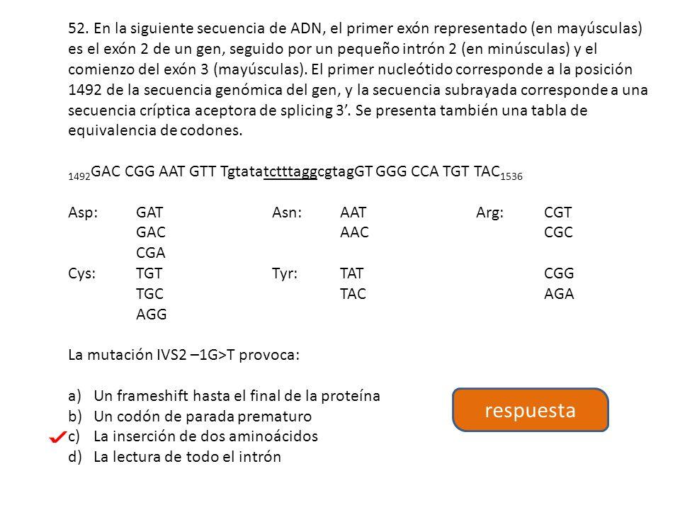 52. En la siguiente secuencia de ADN, el primer exón representado (en mayúsculas) es el exón 2 de un gen, seguido por un pequeño intrón 2 (en minúsculas) y el comienzo del exón 3 (mayúsculas). El primer nucleótido corresponde a la posición 1492 de la secuencia genómica del gen, y la secuencia subrayada corresponde a una secuencia críptica aceptora de splicing 3'. Se presenta también una tabla de equivalencia de codones.