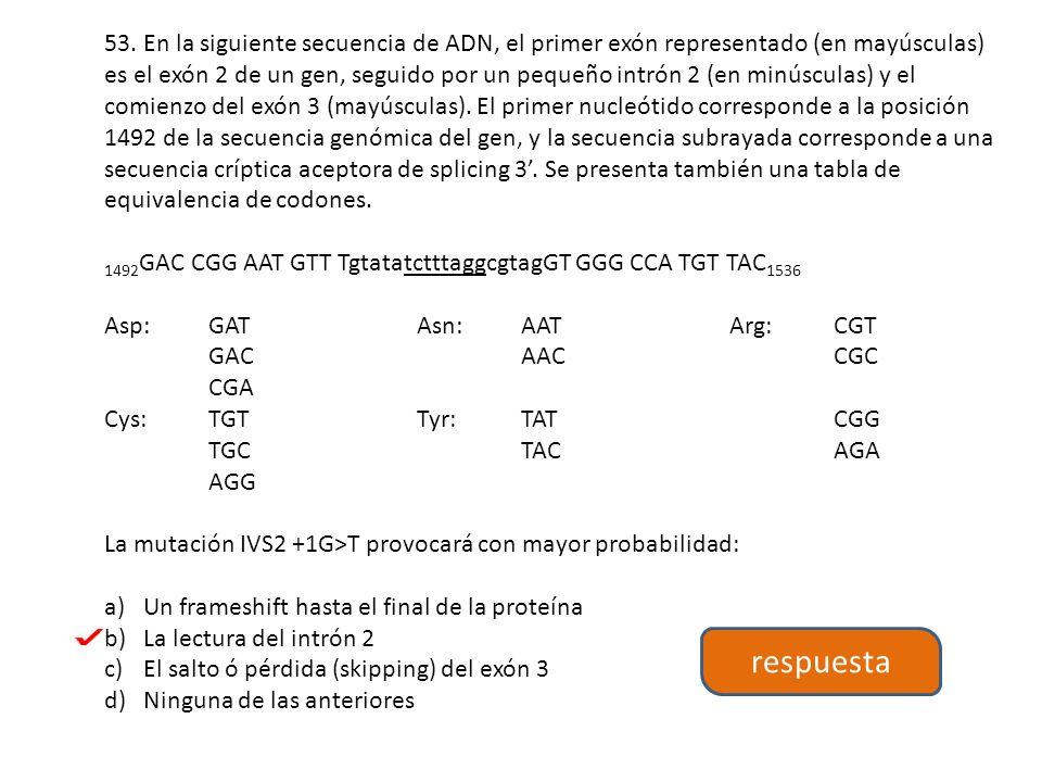 53. En la siguiente secuencia de ADN, el primer exón representado (en mayúsculas) es el exón 2 de un gen, seguido por un pequeño intrón 2 (en minúsculas) y el comienzo del exón 3 (mayúsculas). El primer nucleótido corresponde a la posición 1492 de la secuencia genómica del gen, y la secuencia subrayada corresponde a una secuencia críptica aceptora de splicing 3'. Se presenta también una tabla de equivalencia de codones.