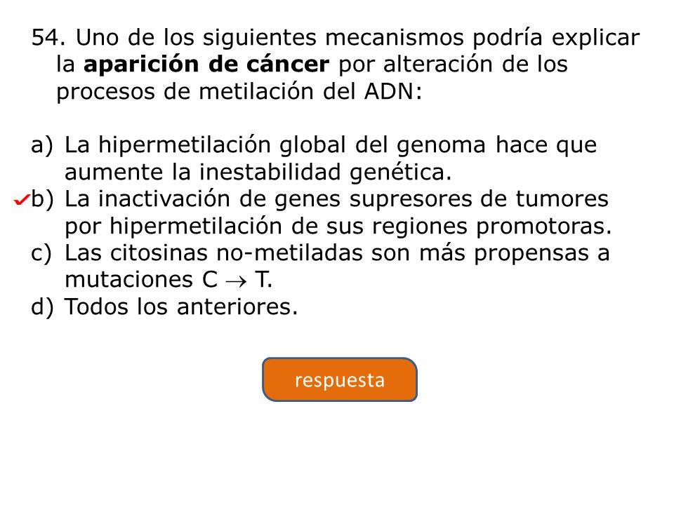54. Uno de los siguientes mecanismos podría explicar la aparición de cáncer por alteración de los procesos de metilación del ADN: