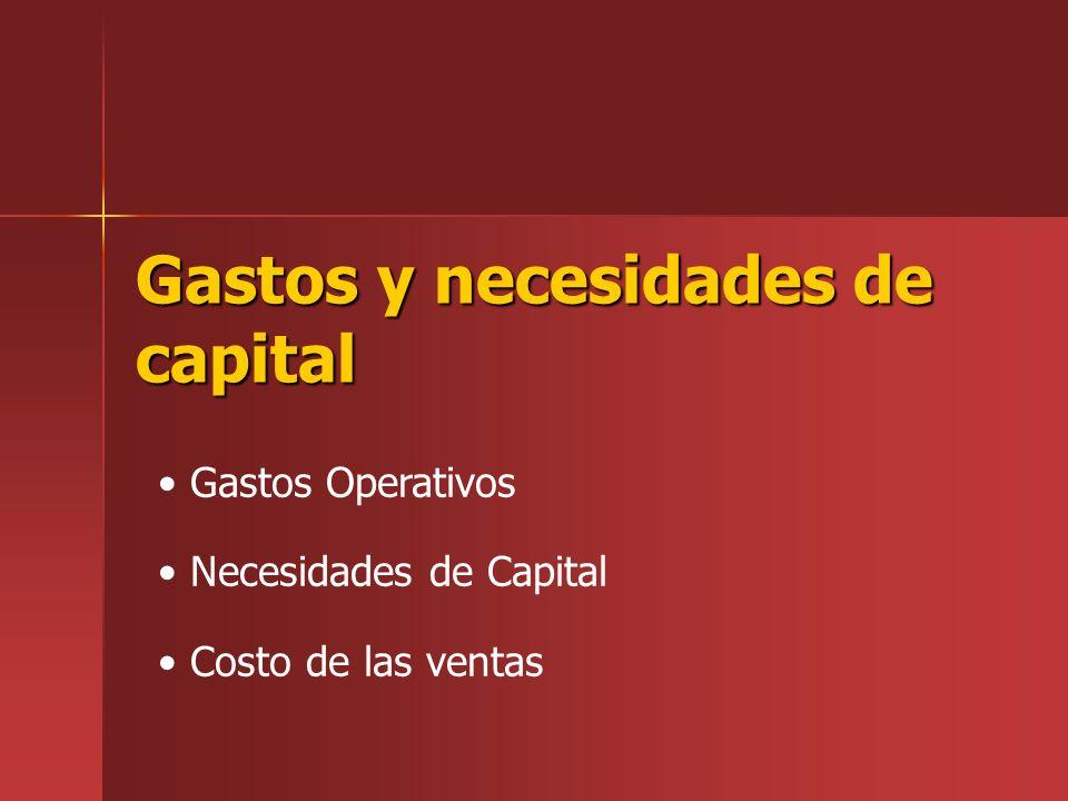 Gastos y necesidades de capital