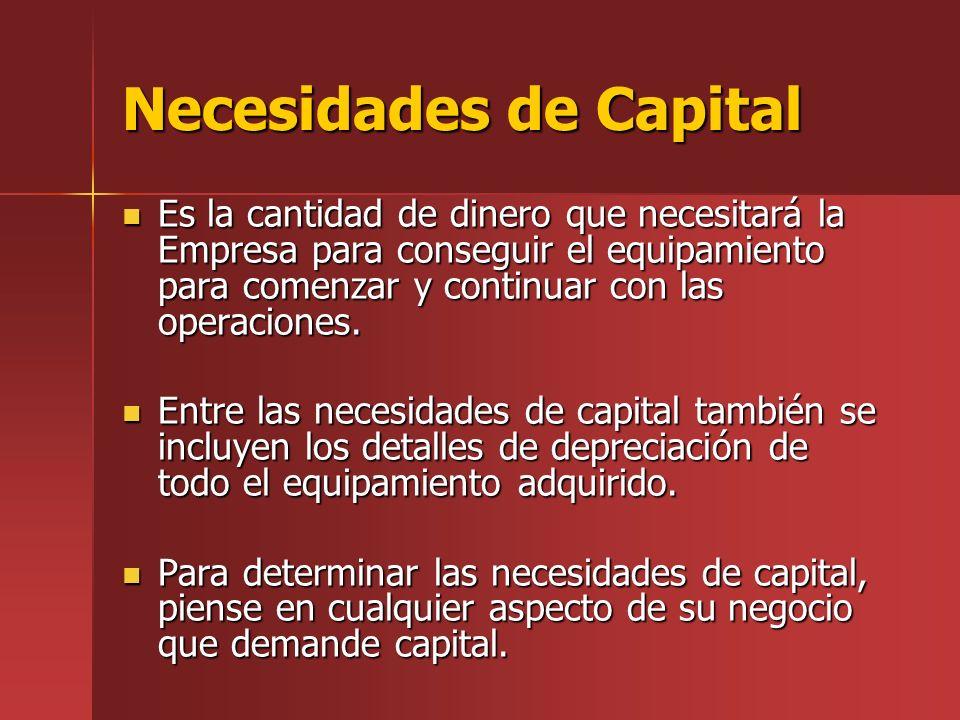 Necesidades de Capital