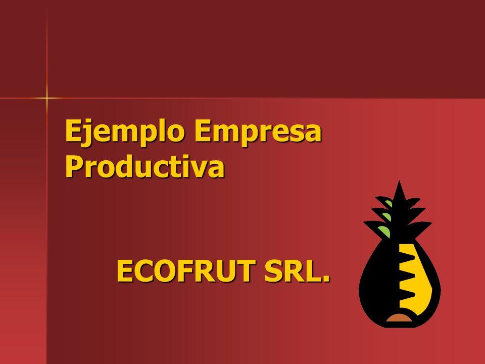 Ejemplo Empresa Productiva