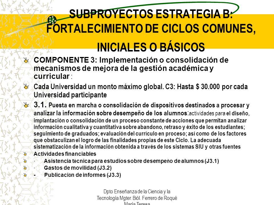 SUBPROYECTOS ESTRATEGIA B: FORTALECIMIENTO DE CICLOS COMUNES, INICIALES O BÁSICOS