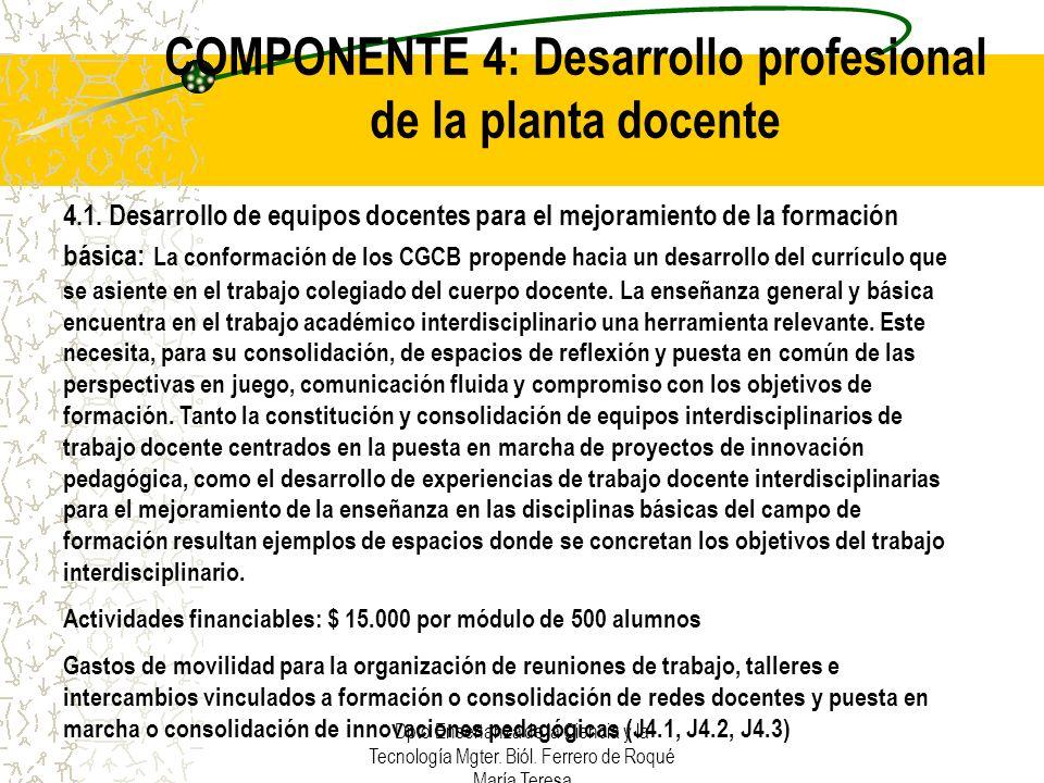 COMPONENTE 4: Desarrollo profesional de la planta docente