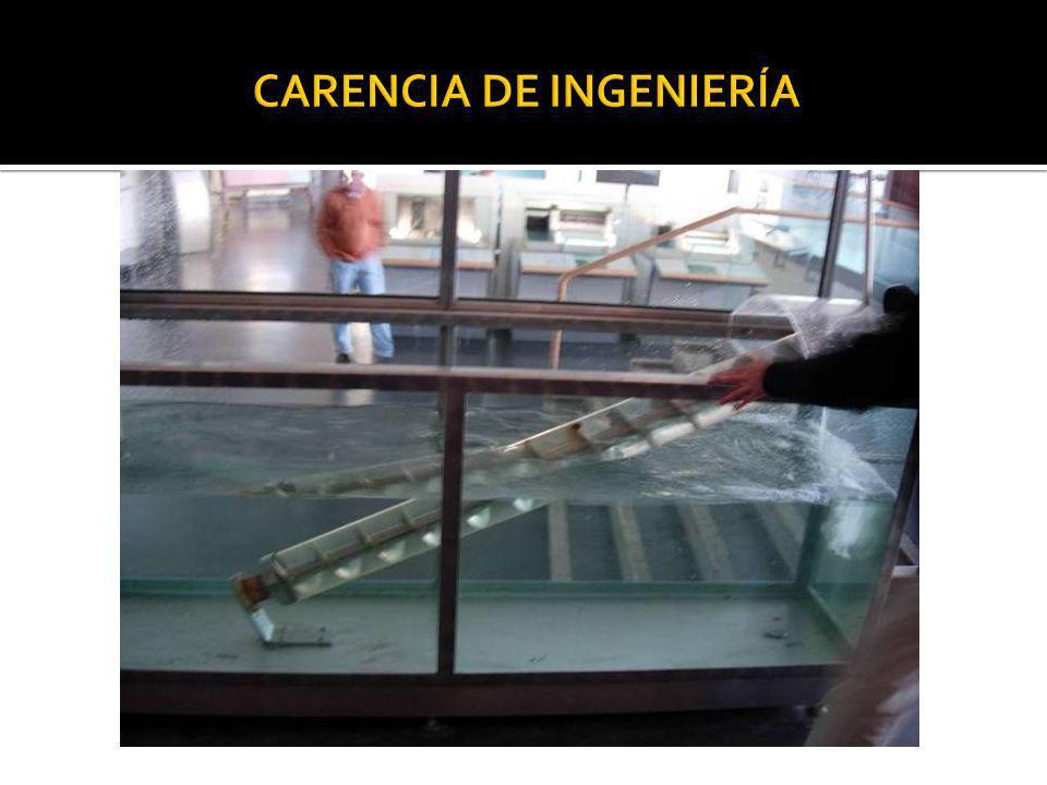CARENCIA DE INGENIERÍA