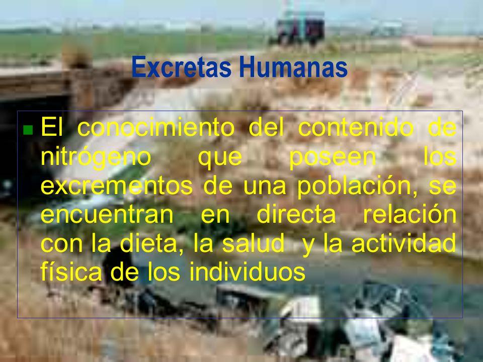 Excretas Humanas