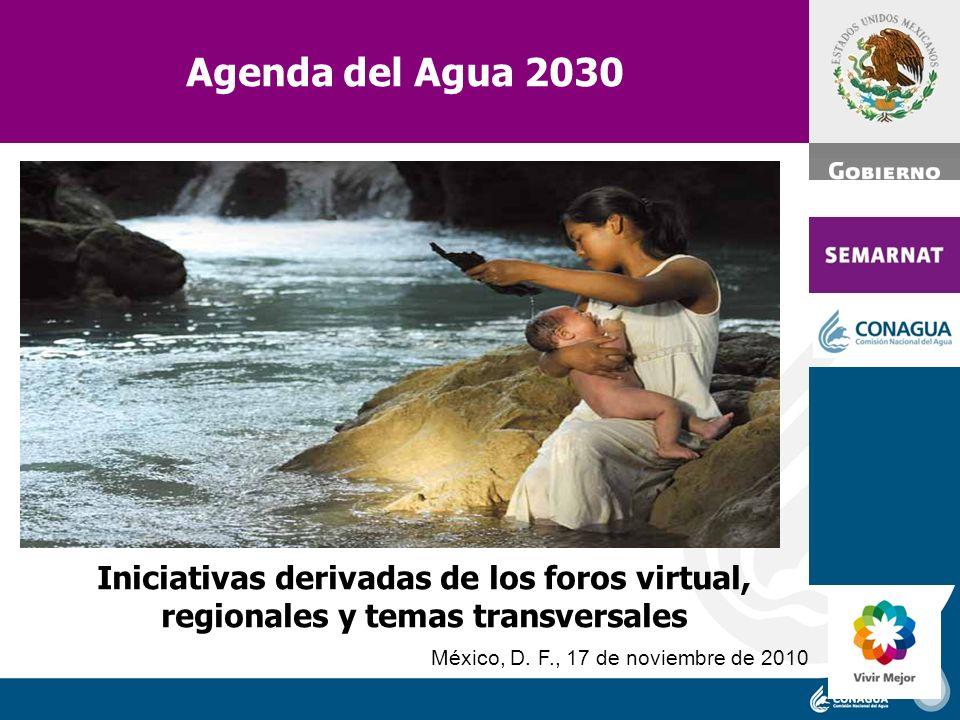 Agenda del Agua 2030 Ing. José Luis Luege Tamargo. Iniciativas derivadas de los foros virtual, regionales y temas transversales.