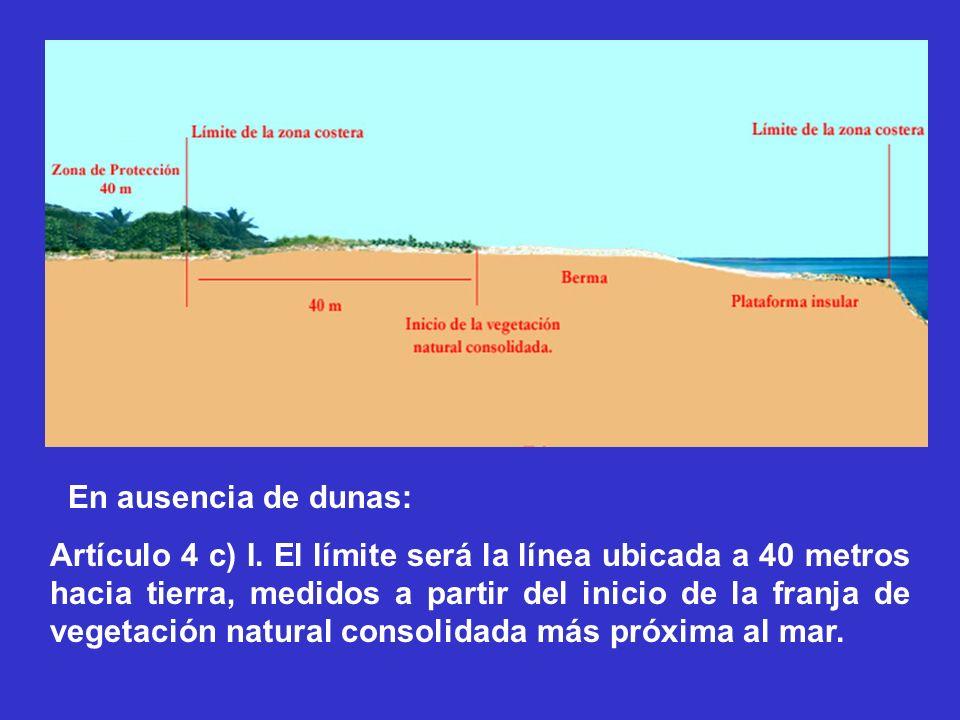En ausencia de dunas: