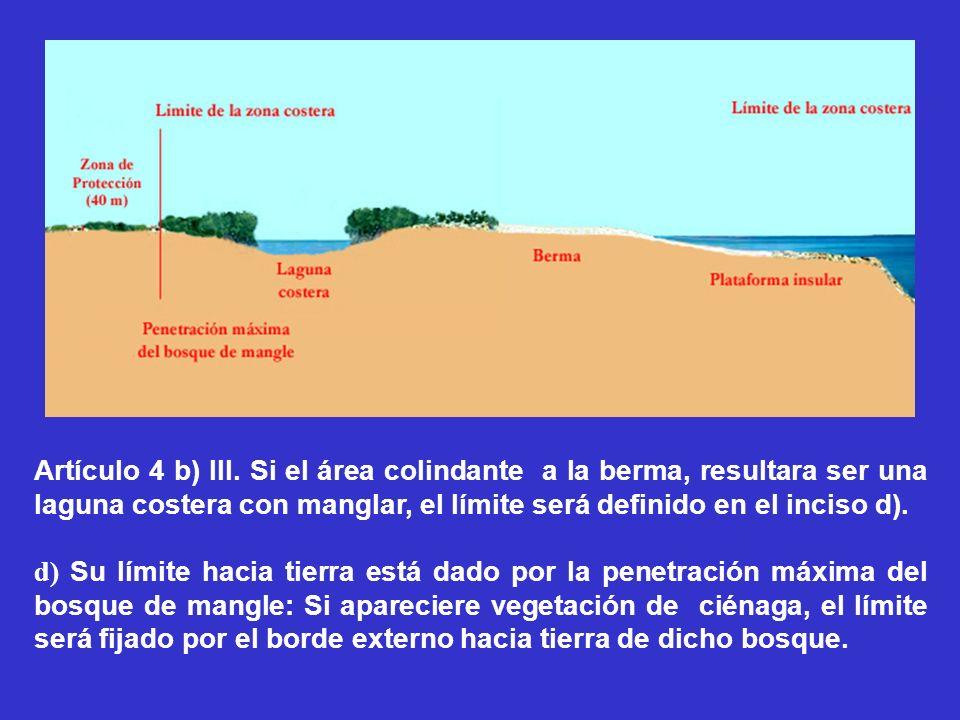 Artículo 4 b) III. Si el área colindante a la berma, resultara ser una laguna costera con manglar, el límite será definido en el inciso d).