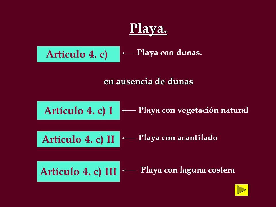 Playa. Artículo 4. c) Artículo 4. c) I Artículo 4. c) II