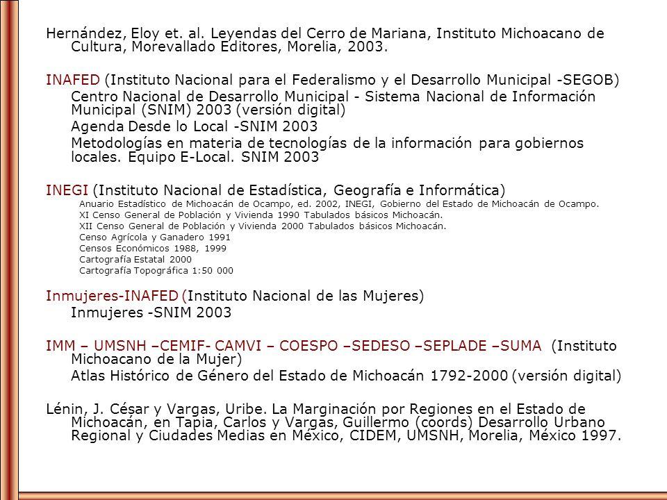 Agenda Desde lo Local -SNIM 2003