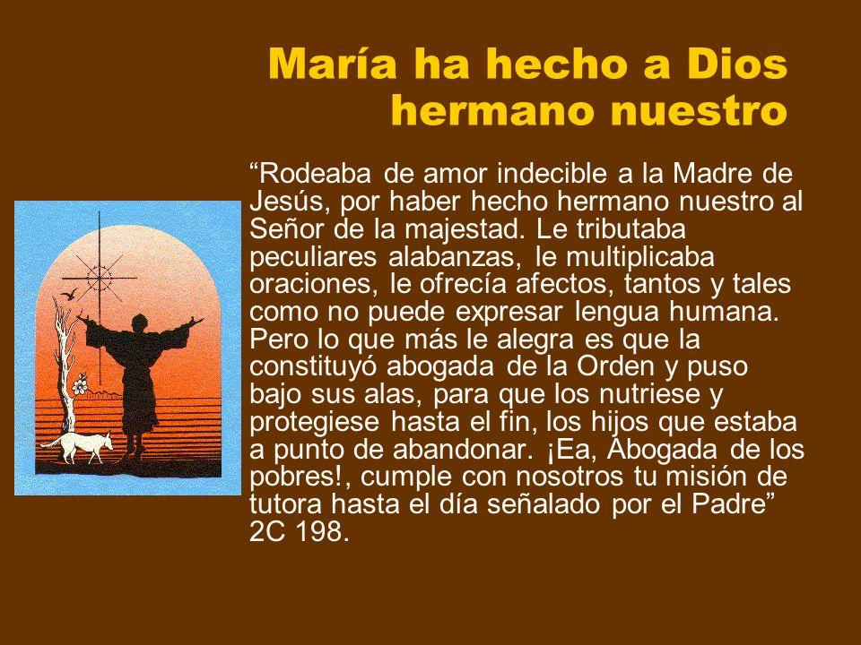 María ha hecho a Dios hermano nuestro