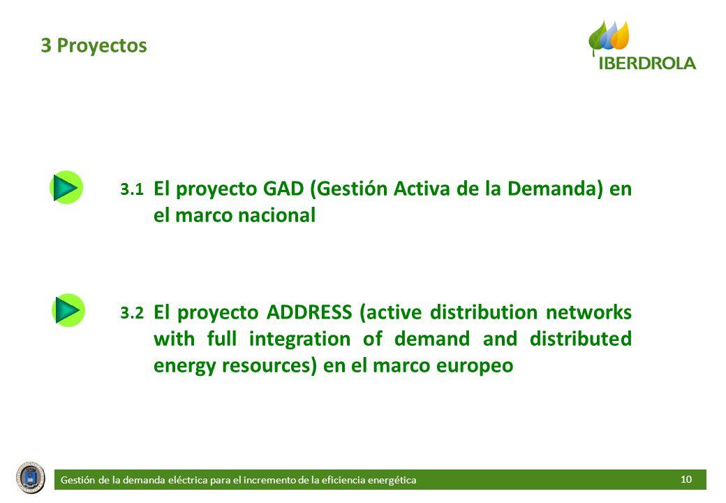 3 Proyectos 3.1 El proyecto GAD (Gestión Activa de la Demanda) en el marco nacional.