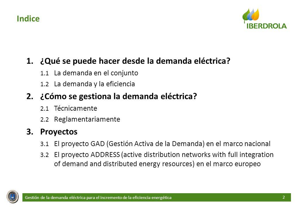 ¿Qué se puede hacer desde la demanda eléctrica