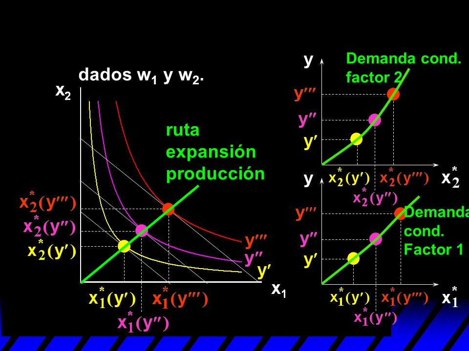ruta expansión producción