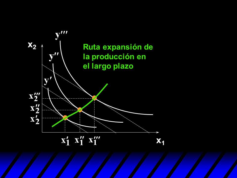 x2 Ruta expansión de la producción en el largo plazo x1