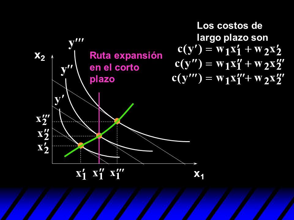 Los costos de largo plazo son x2 Ruta expansión en el corto plazo x1