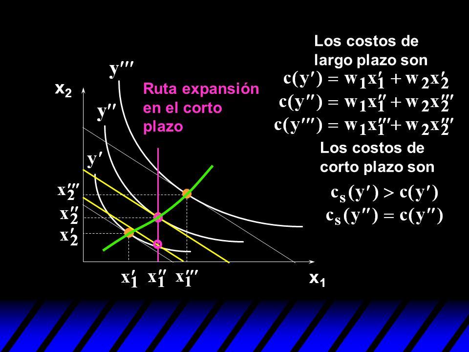 x2 x1 Los costos de largo plazo son Ruta expansión en el corto plazo