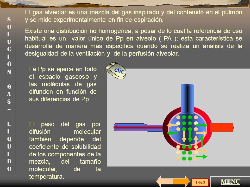 El gas alveolar es una mezcla del gas inspirado y del contenido en el pulmón y se mide experimentalmente en fin de espiración.