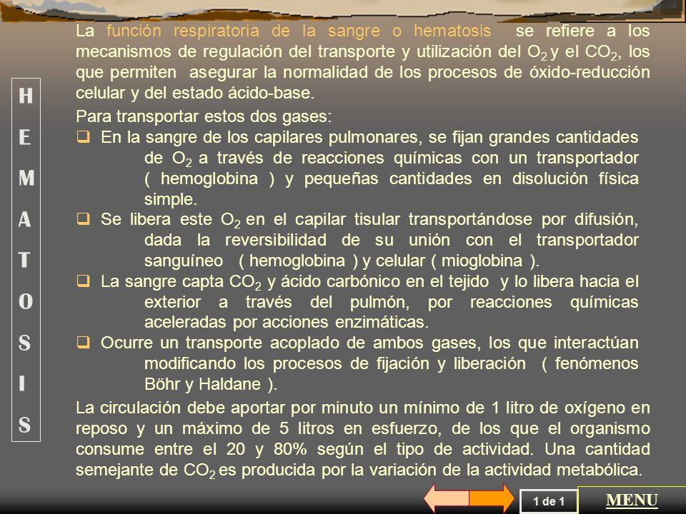 La función respiratoria de la sangre o hematosis se refiere a los mecanismos de regulación del transporte y utilización del O2 y el CO2, los que permiten asegurar la normalidad de los procesos de óxido-reducción celular y del estado ácido-base.