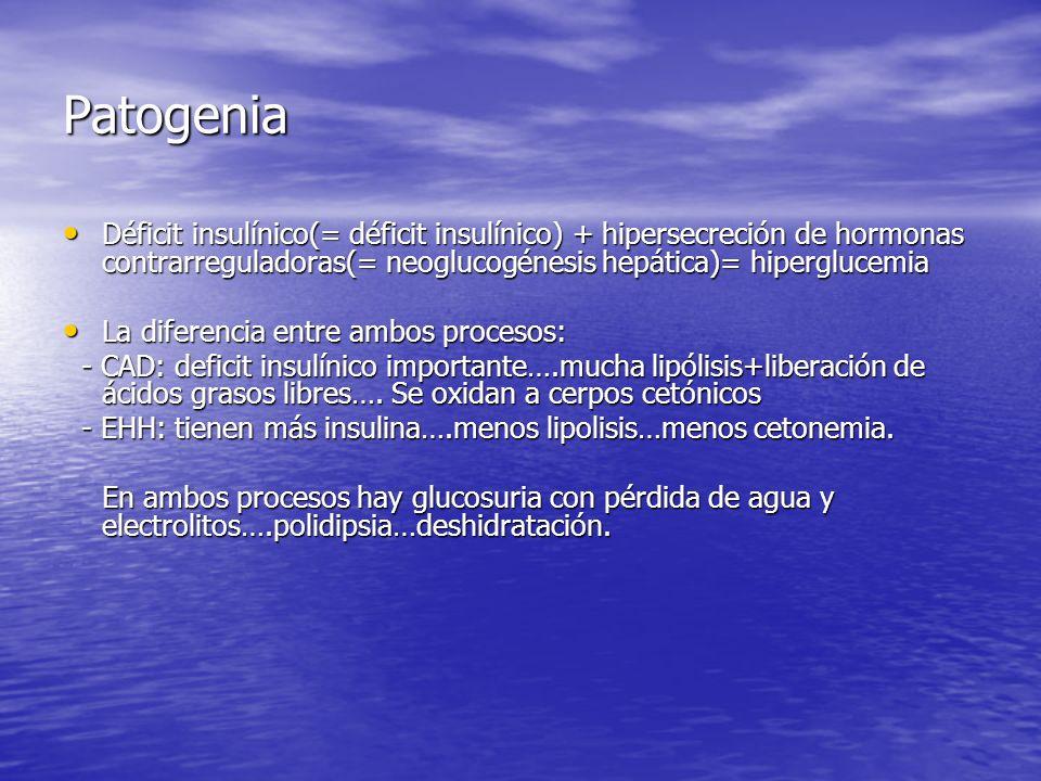 Patogenia Déficit insulínico(= déficit insulínico) + hipersecreción de hormonas contrarreguladoras(= neoglucogénesis hepática)= hiperglucemia.