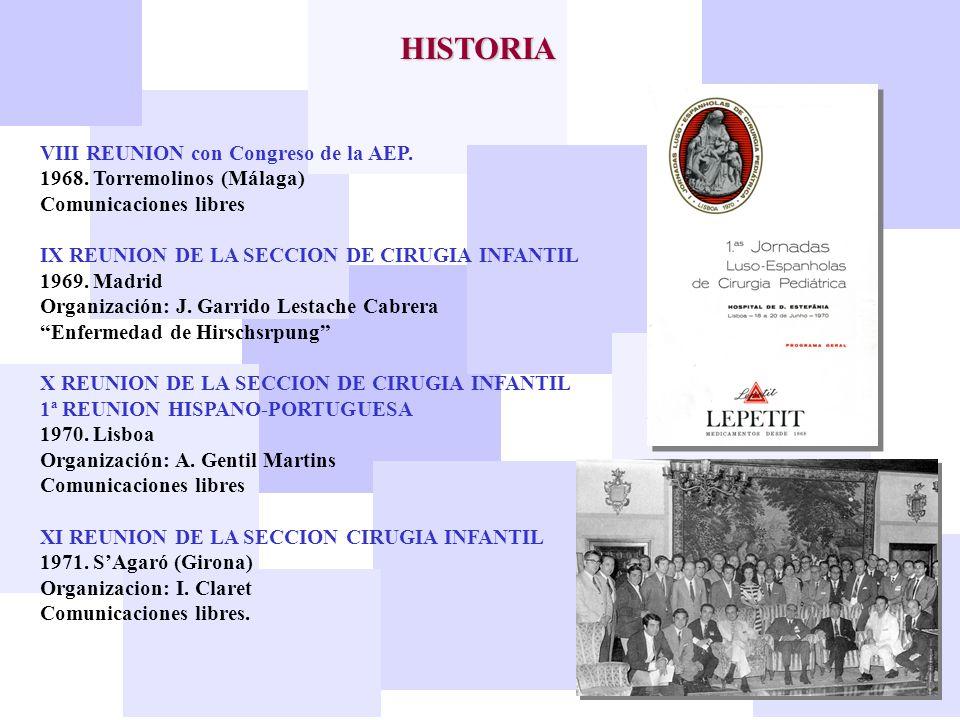 HISTORIA VIII REUNION con Congreso de la AEP.