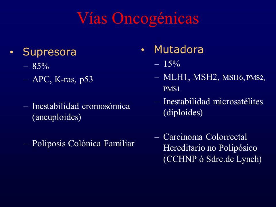 Vías Oncogénicas Mutadora Supresora 15% 85%