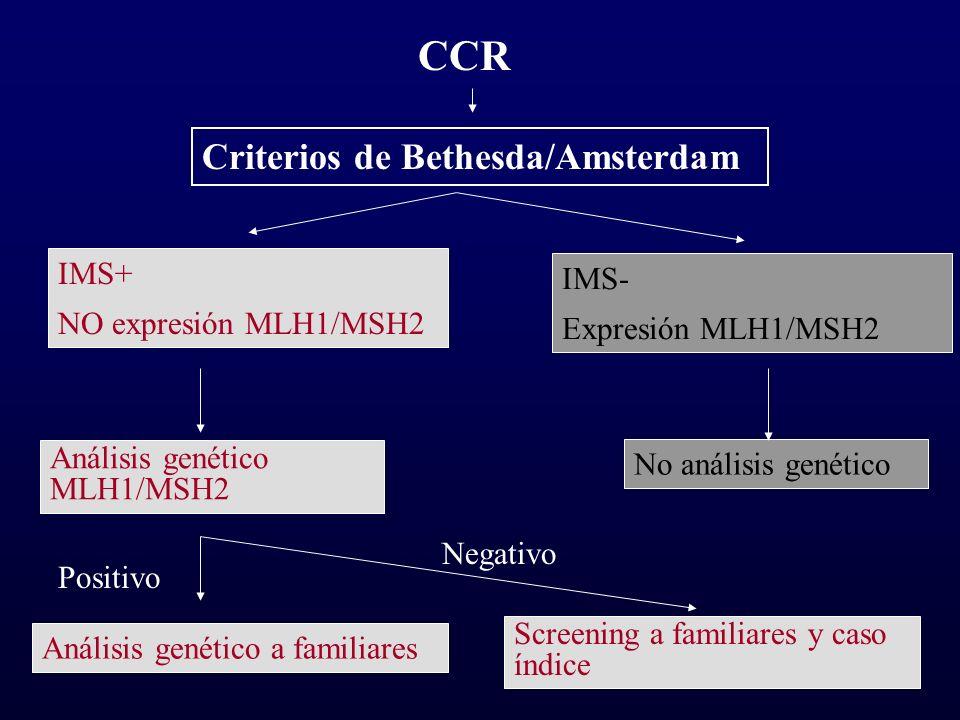 CCR Criterios de Bethesda/Amsterdam IMS+ IMS- NO expresión MLH1/MSH2