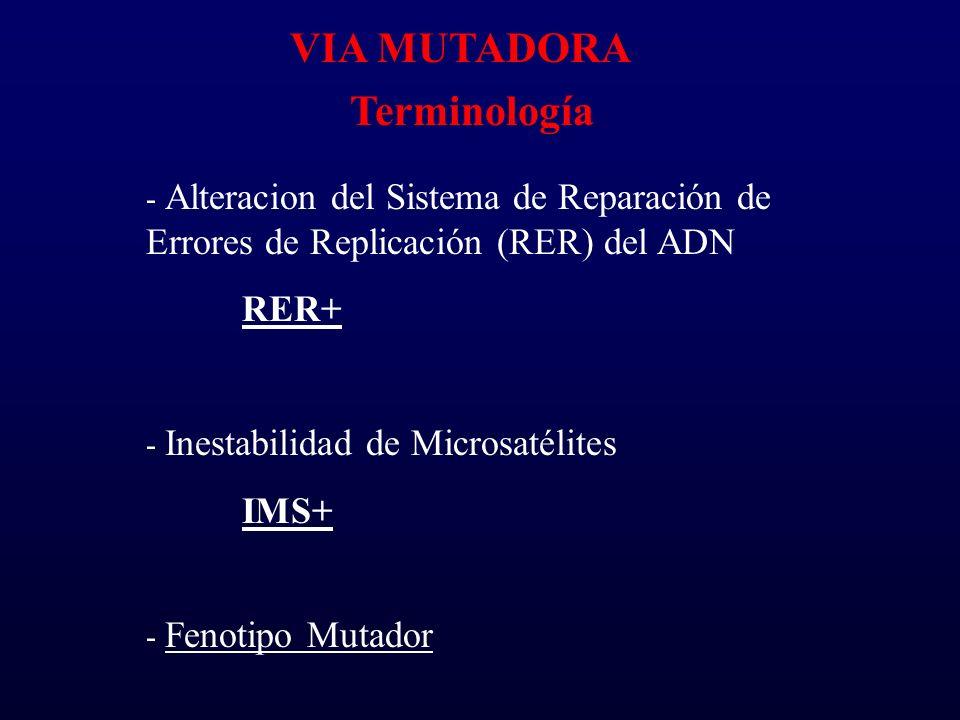 VIA MUTADORA Terminología