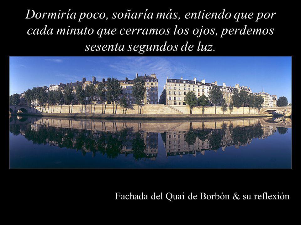 Fachada del Quai de Borbón & su reflexión