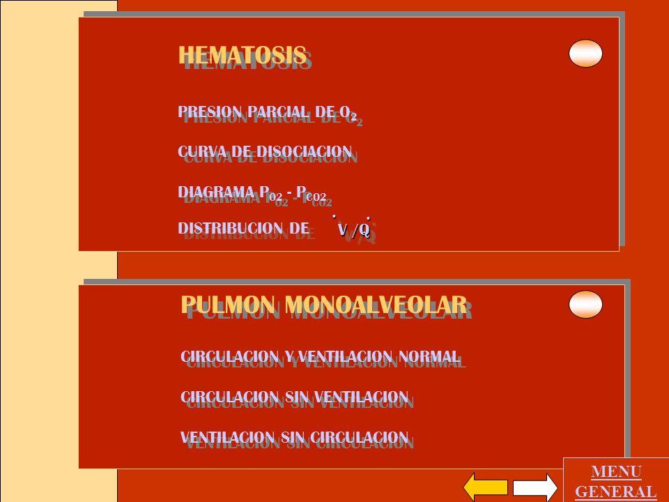 HEMATOSIS PULMON MONOALVEOLAR PRESION PARCIAL DE O2