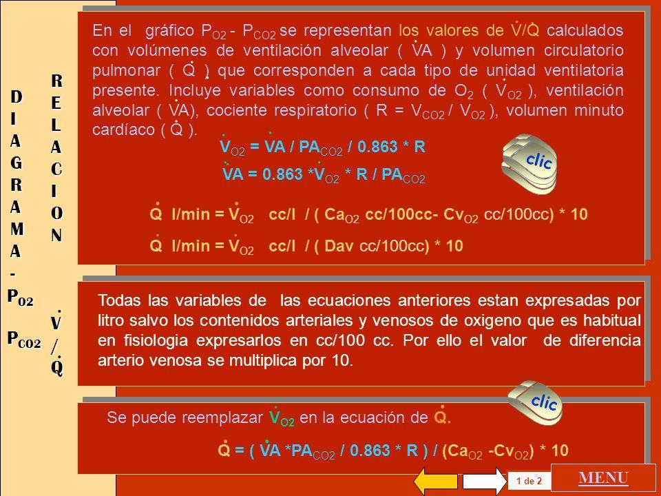 . . . . . . . . RELACION DIAGRAMA - V / Q PO2 PCO2
