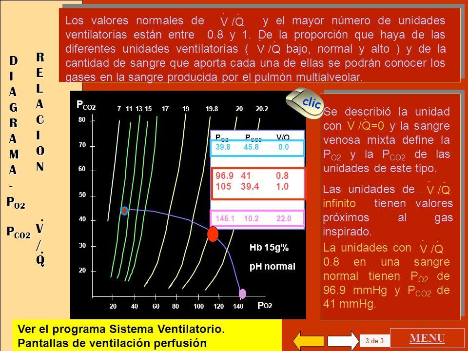 . RELACION DIAGRAMA . - V / Q PO2 PCO2 .