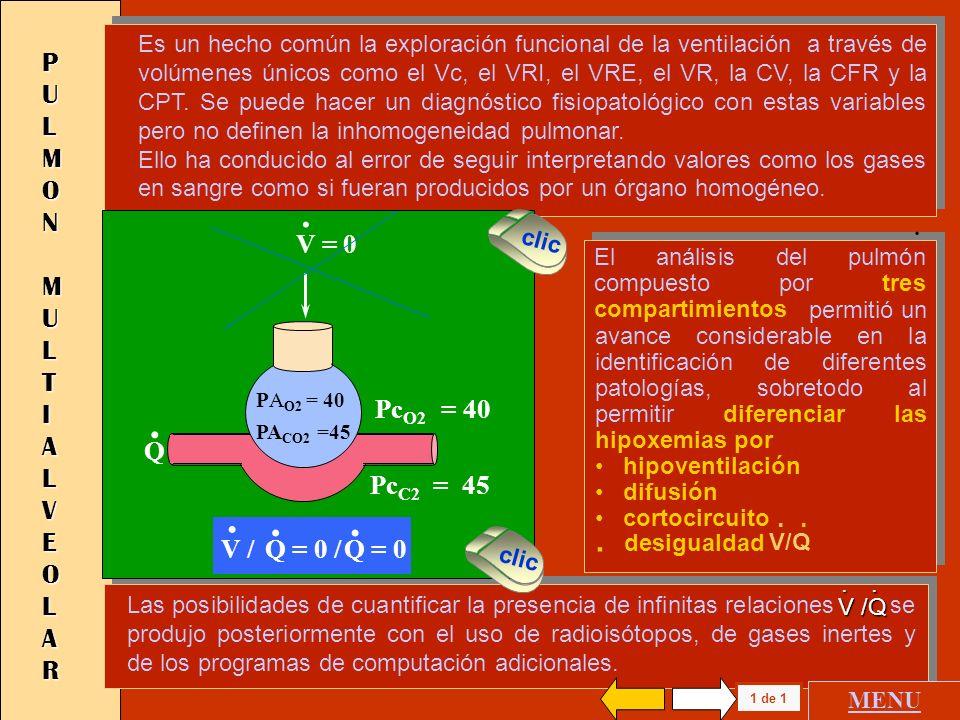. . . desigualdad PULMON MULTIALVEOLAR V = 0 PcO2 = 40 PcC2 = 45 V /