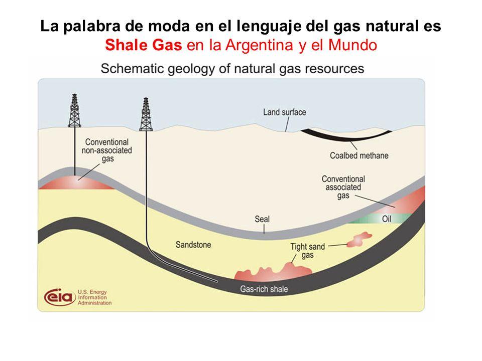 La palabra de moda en el lenguaje del gas natural es Shale Gas en la Argentina y el Mundo