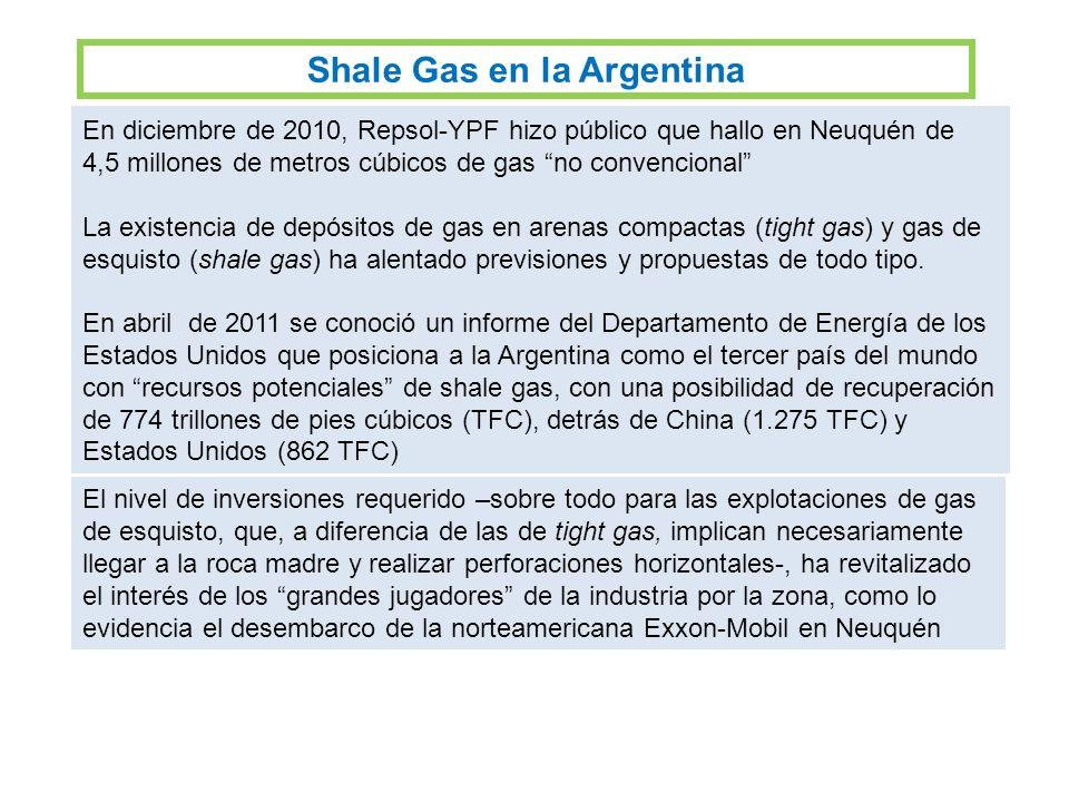 Shale Gas en la Argentina
