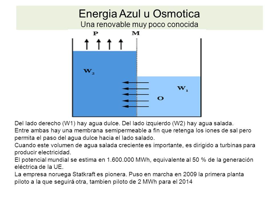 Energia Azul u Osmotica Una renovable muy poco conocida