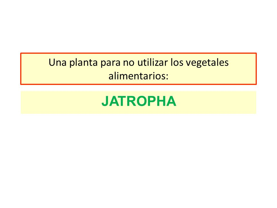 Una planta para no utilizar los vegetales alimentarios: