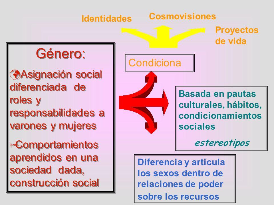 Cosmovisiones Identidades. Proyectos de vida. Género: Asignación social diferenciada de roles y responsabilidades a varones y mujeres.